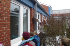 max_meise_4_20140317_1694940660