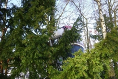 max_meise_8_20140317_1899053713